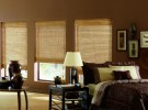 Woven Wood Shades in your sitting room